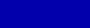 BRIUS Logo
